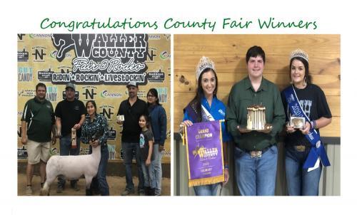 Congrats to the Waller County Fair Winners