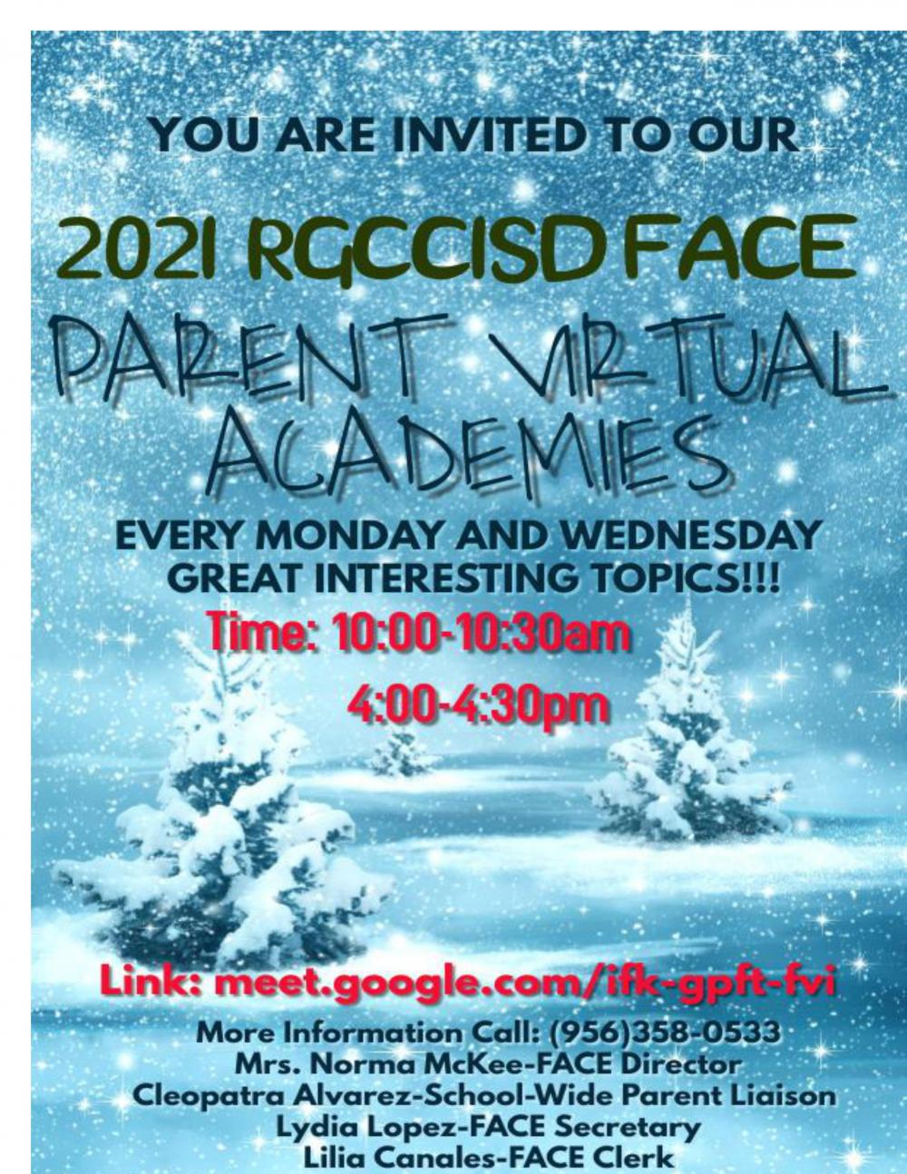 Virtual Academies