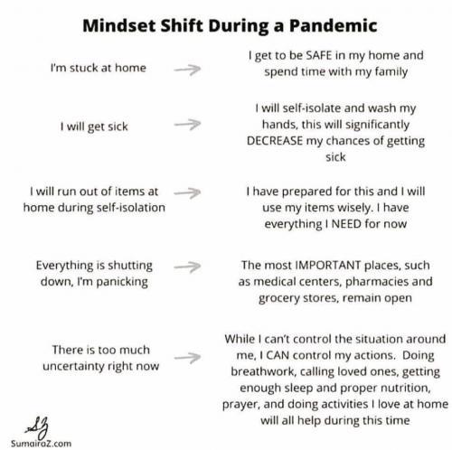 Pandemic Mindset