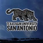 Texas A&M - San Antonio Jaime Herrera photo