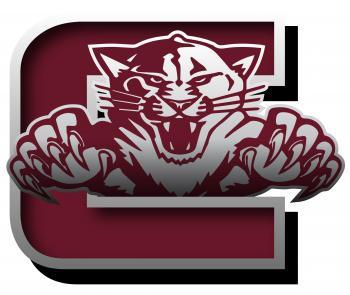 Coleman Wildcat