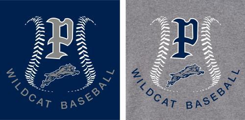 2019 baseball shirt design