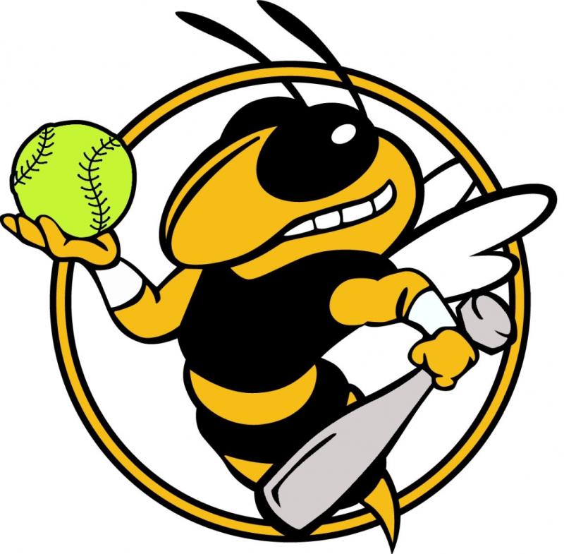 Lady Hornets Softball Wins!