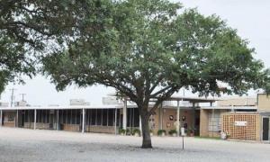 Dozier Elementary in 1994.