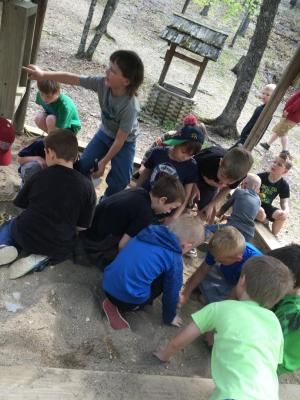 Digging for fossils