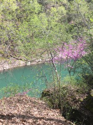 Beaver Lake was beautiful!