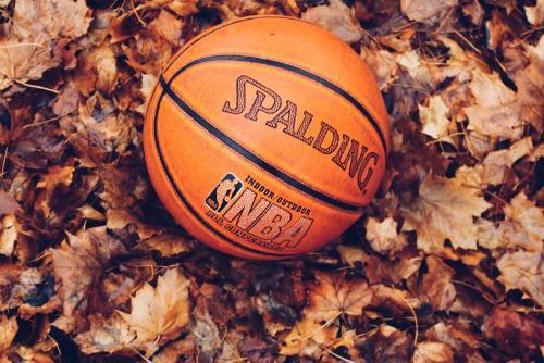 Basketball in Leaves