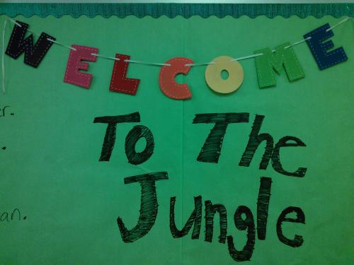Welcome to the Kindergarten Jungle.