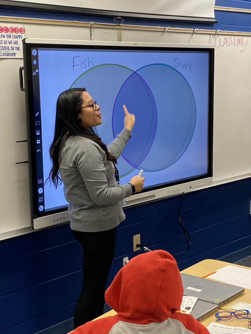 SMART Technology in the Classroom