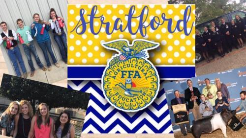 Stratford FFA Judging and Show Teams