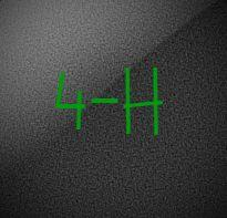 4-H Information