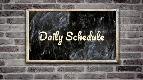 daily schedule button