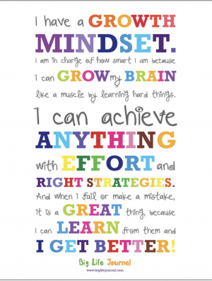 This is our growth mindset declaration that we say each morning before we begin learning!  It gets us in the right mindset to tackle the day.