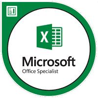 MOS Excel