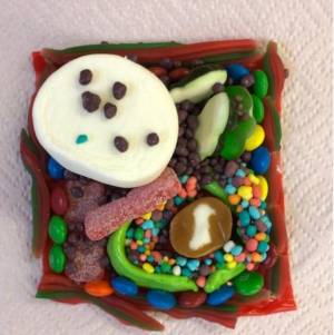 Fruit Roll Up Plant Cell