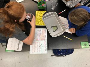 Hands on Activities for learning