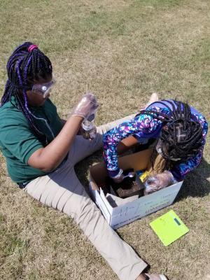 2019-2020 1st Fair Test planting onions