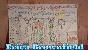 Erica Brownfield