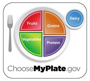 Food Plate breakdown