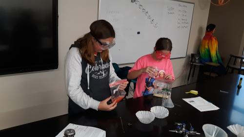 DNA extraction lab