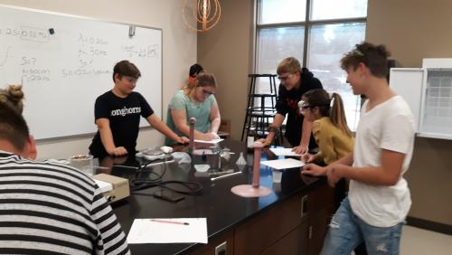 8th grade testing the effects of concentration on rate of chemical reactions