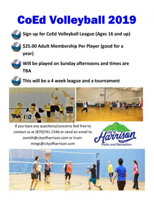 CoEd Volleyball Info.