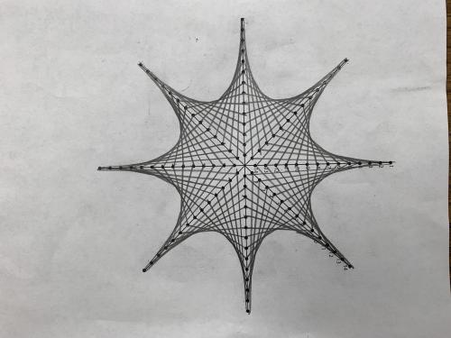 spider web drawing by student