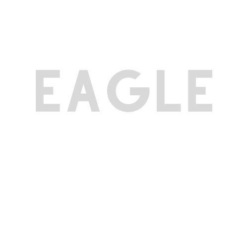 Lady Eagles Slowpitch Softball