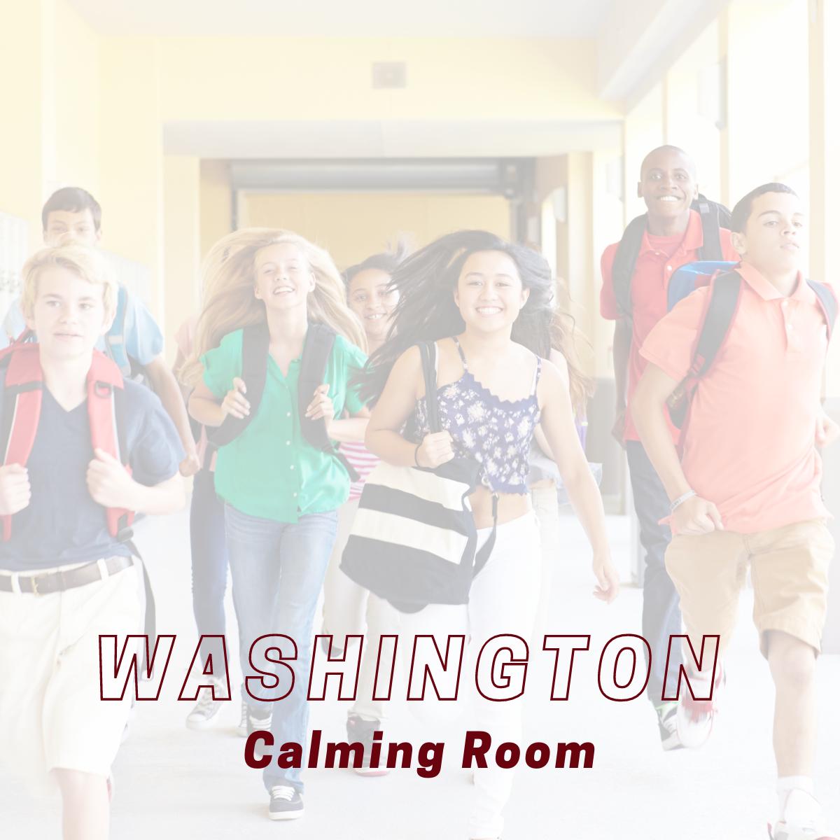 Washington Calming Room