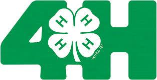 green 4 h logo with clover