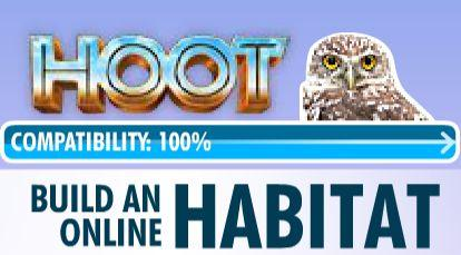 hoot the owl