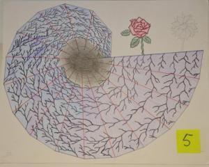 0004 Pythagorean Spirals