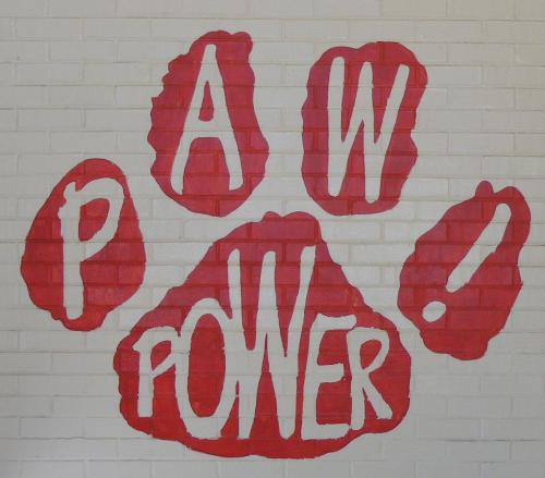 Paw Power