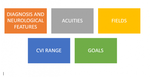 DIAGNOSIS AND NEUROLOGICAL FEATURES , ACUITIES  , FIELDS,   CVI RANGE , GOALS  Graphic Banner