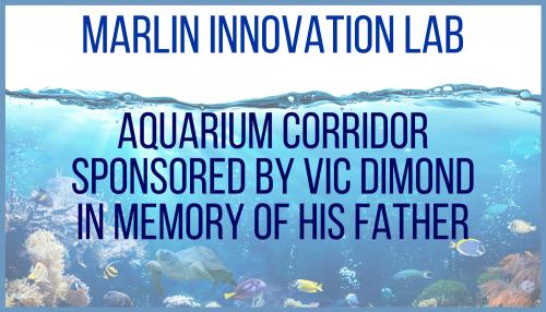 MIL Aquarium Corridor