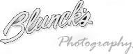 An Image showing Blunck's Studios