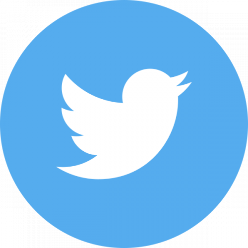 Picture of Twitter logo