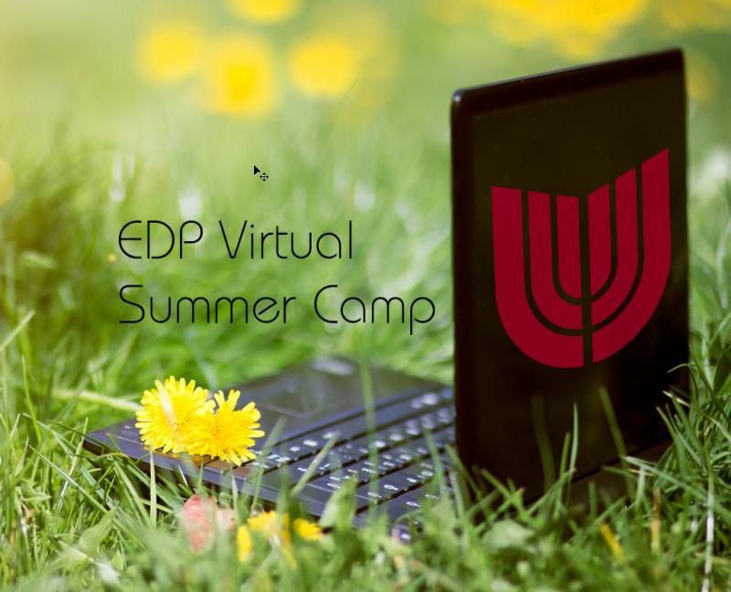Three More Weeks of EDP Summer Camp Fun