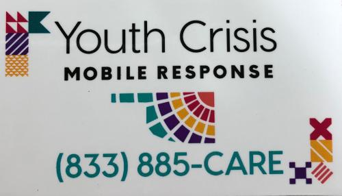 Youth Crisis