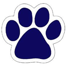 Panther paw image