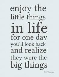 Enjoy the little things in life because someday you will realize they are big things