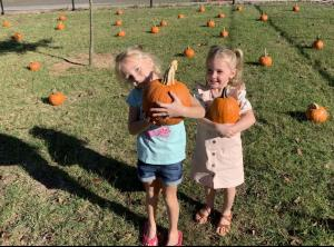 Our perfect pumpkins.