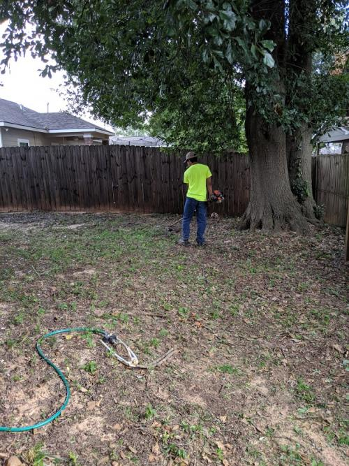 Youth weedeating fence line