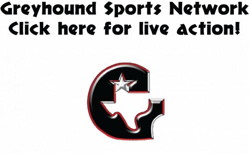 greyhound sports link