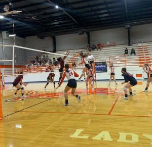 Lady Lions vs. Palestine 8/28/2020