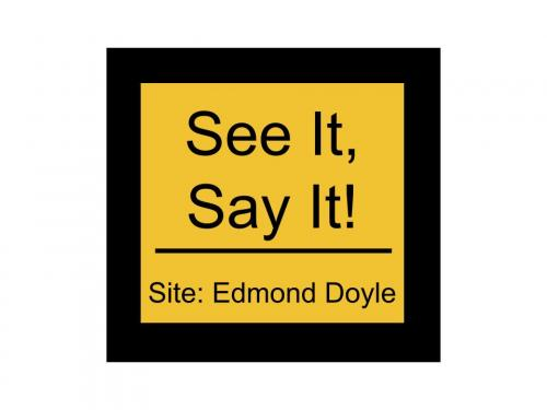 See It, Say it! Button for Edmond Doyle