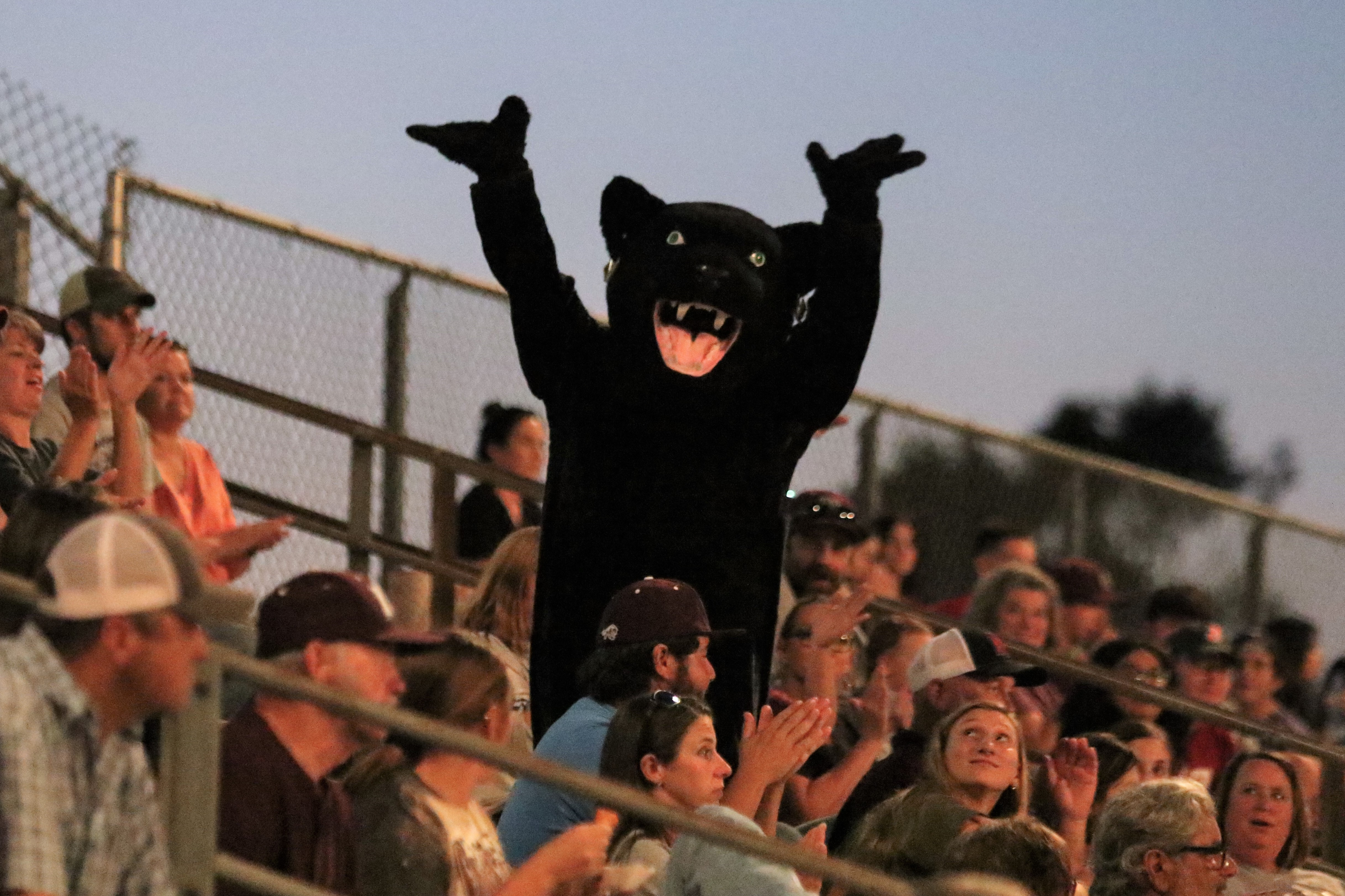 Peppy the Panther