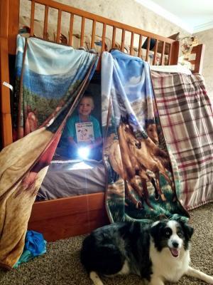 Lane built a blanket fort.