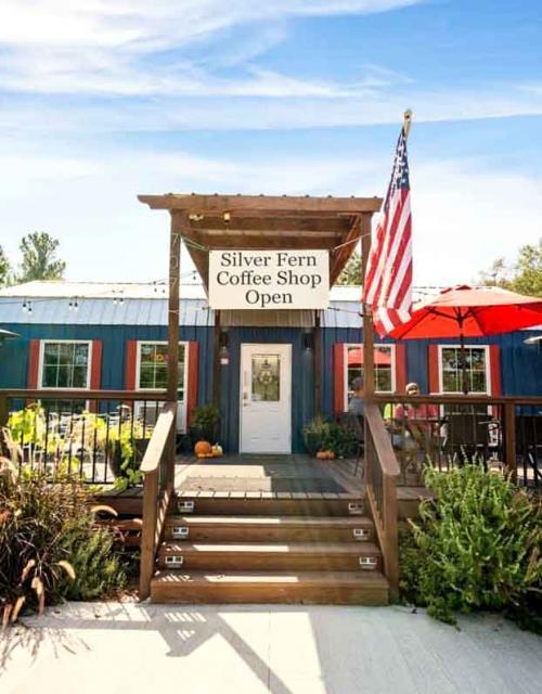 silver fern coffee shop