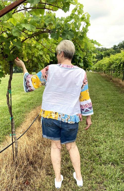 tempe creek vineyard vines